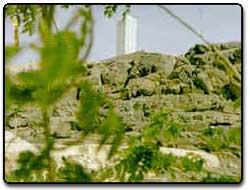 Mercy Mount
